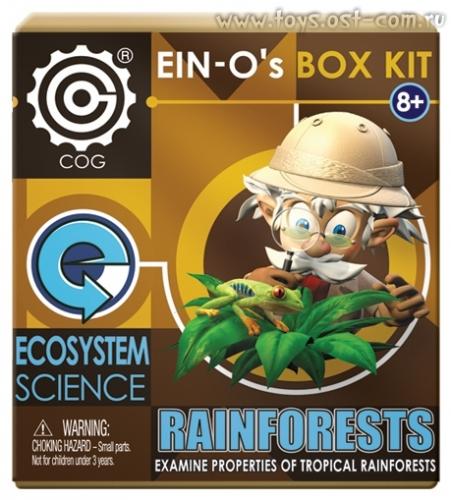 Профессор Эйн: Тропический лес