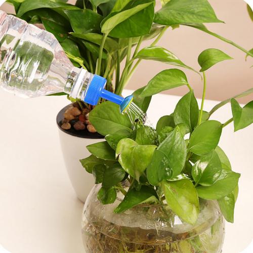 Крышка-лейка на бутылку пластиковая для полива цветов