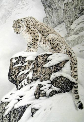 Алмазная мозайка: Снежный барс размер 48х70 Ag 502