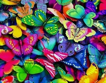 Алмазная мозайка: Разноцветные бабочки размер 48х38 Ag 404