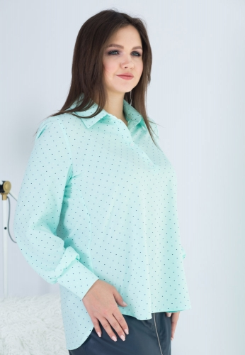 Блуза В-1023