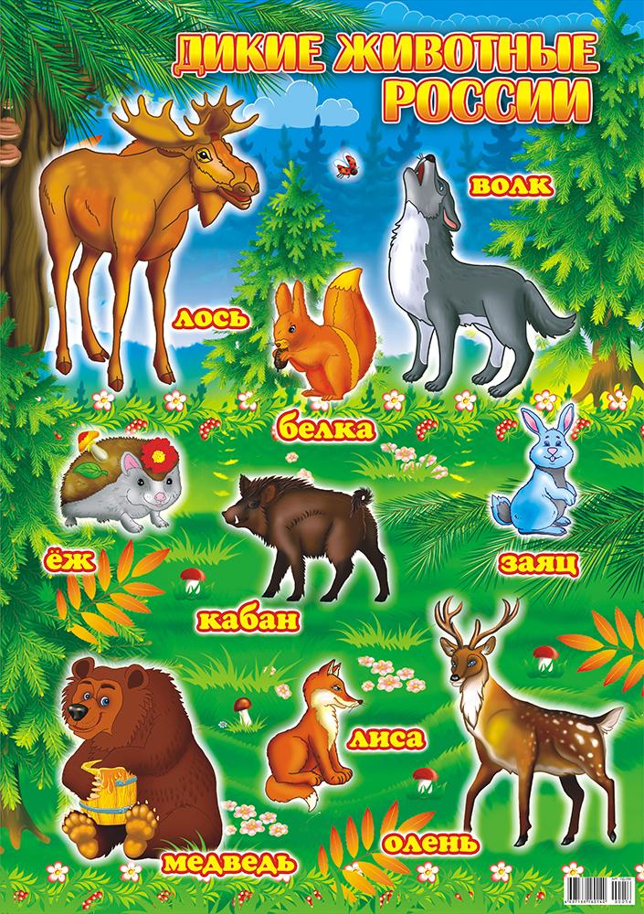 плакаты с картинками животных для сигарет