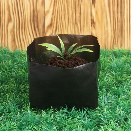 Пакет для рассады, 5 л, 33 × 40 см, с перфорацией, толщина 100 мкм, чёрный