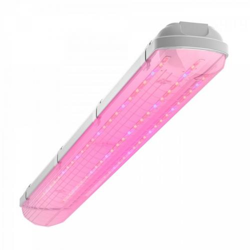 Светодиодный фитосветильник Geniled ЛСП Agro, влагозащищенный, 40Вт, прозрачный, 120°, IP65   423896