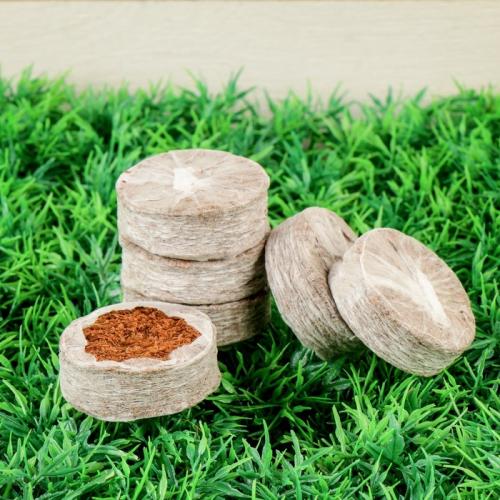 Таблетки кокосовые, в оболочке, d = 4,2 см, набор 6 шт.