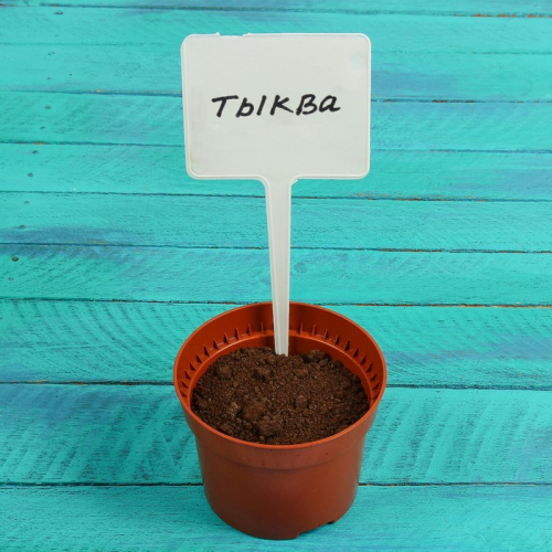 Ярлыки садовые для маркировки, 22 см, с маркером, набор 8 шт., пластик