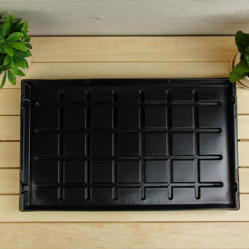 Поддон для рассады, 54 × 33 см