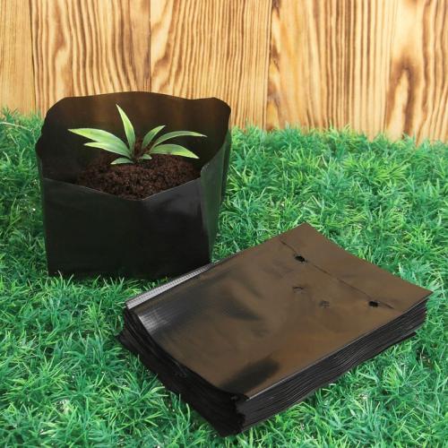 Пакет для рассады, 3 л, 27 × 35 см, с перфорацией, толщина 100 мкм, чёрный