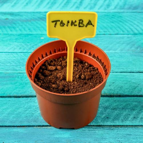 Ярлыки садовые для маркировки, 15 см, набор 10 шт., пластик, цвет МИКС