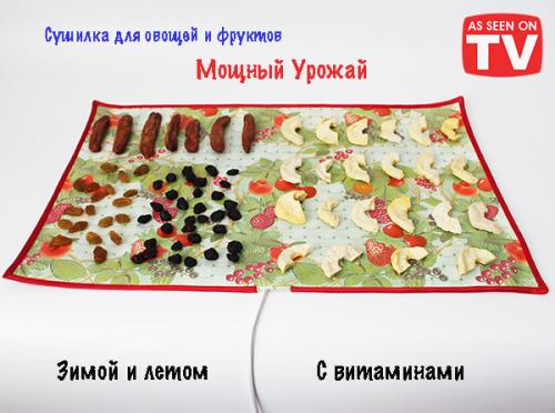 Сушилка для овощей и фруктов Мощный Урожай, 33х55 см., Ягоды