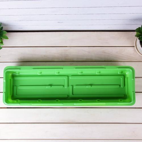 Мини-парник для рассады, 57 × 18 × 12 см, без вставок