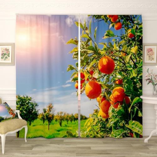 Фотошторы Спелые мандарины