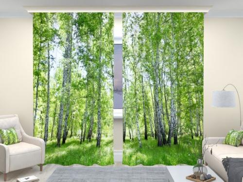 Фотошторы люкс Березовый лес 2