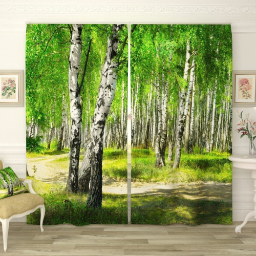 Фотошторы Утренний березовый лес