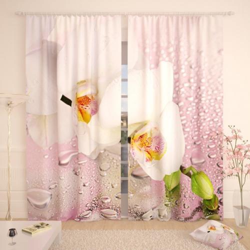 Фотошторы Белая орхидея в розовом отражении