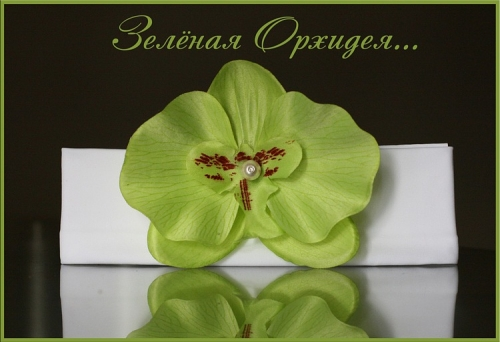 Повязочка Зеленая орхидея