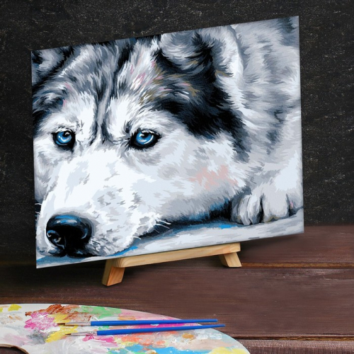 Картина по номерам на холсте 30×40 см «Хаски»