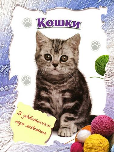 В удивительном мире животных. Кошки