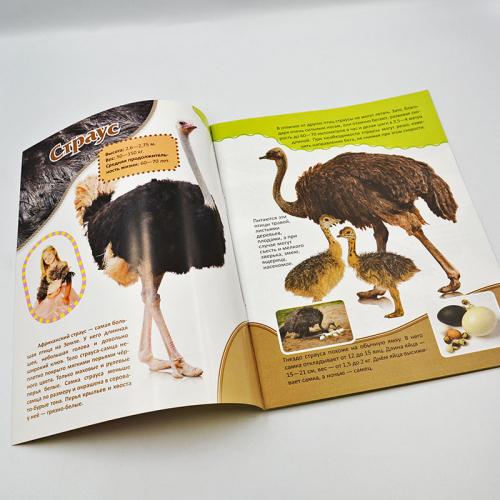Животные Африки (в удивительном мире)