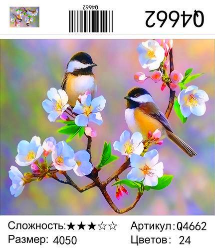 Q4662 Картины-раскраски по номерам 40х50