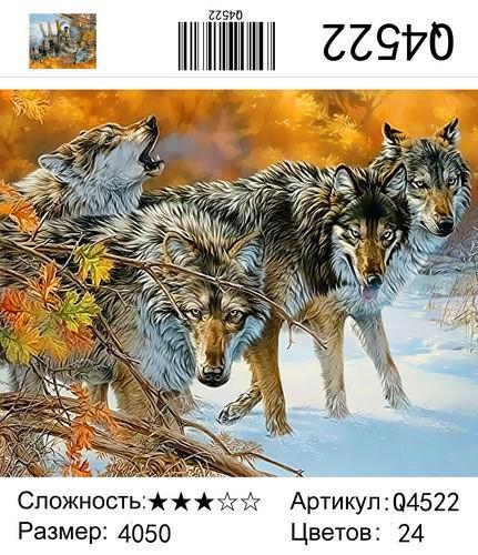 Q4522 Картины-раскраски по номерам 40х50