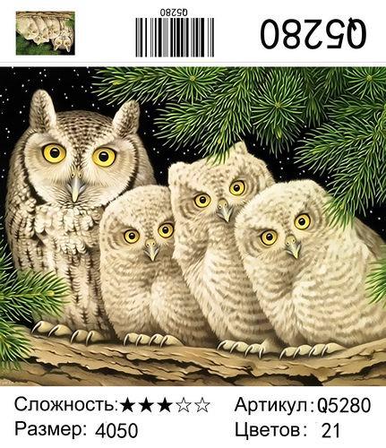 Q5280 Картины-раскраски по номерам 40х50