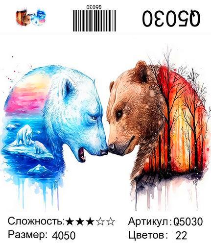 Q5030 Картины-раскраски по номерам 40х50