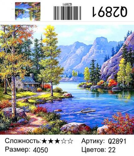 Q2891 Картины-раскраски по номерам 40х50