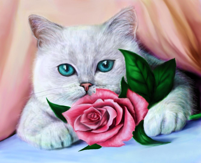 Картинки котята с цветами роз курорт