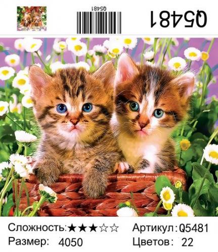Q5481 Картины-раскраски по номерам 40х50