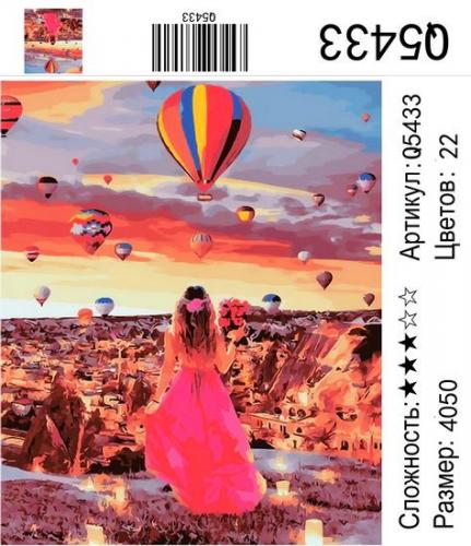 Q5433 Картины-раскраски по номерам 40х50