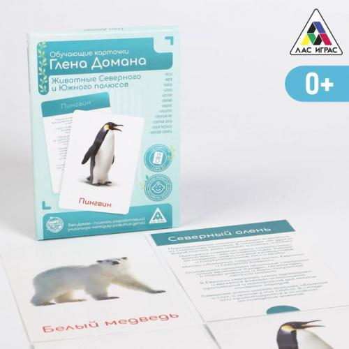 Обучающие карточки по методике Глена Домана «Животные Северного и Южного полюсов», 12 карт, А6, в коробке