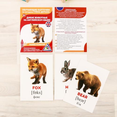 Обучающие карточки по методике Г. Домана «Дикие животные на английском языке», 12 карт, А6