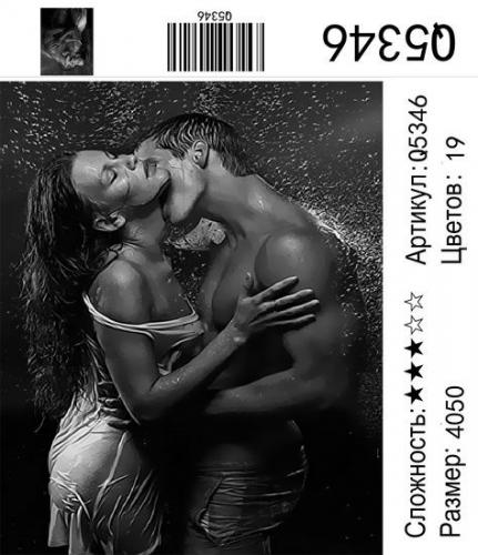 Q5346 Картины-раскраски по номерам 40х50