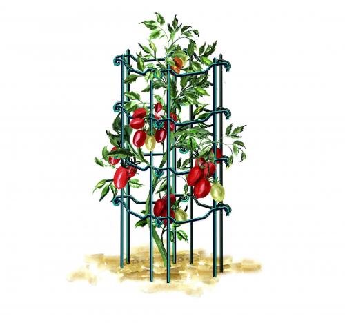 Опора под томаты 80 см бирюзовая