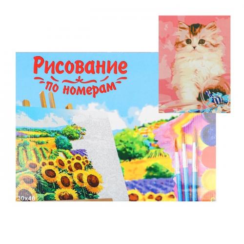Картина по номерам на холсте 30 × 40 см, «Котёнок с конфетами»