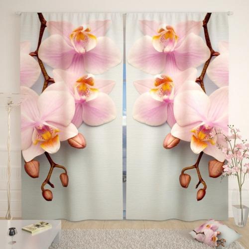 Фотошторы Строгие орхидеи