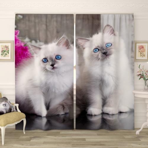 Фотошторы Братья котята