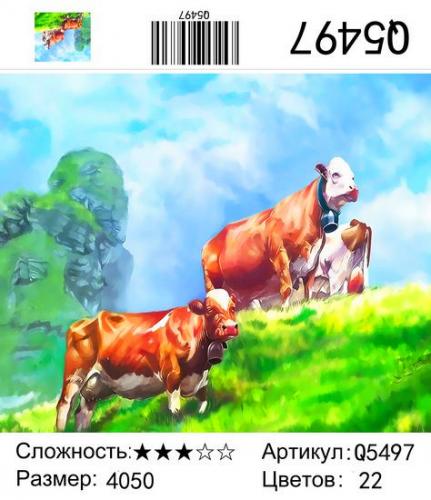 Q5497 Зима 2020-2021 Картины-раскраски 40х50