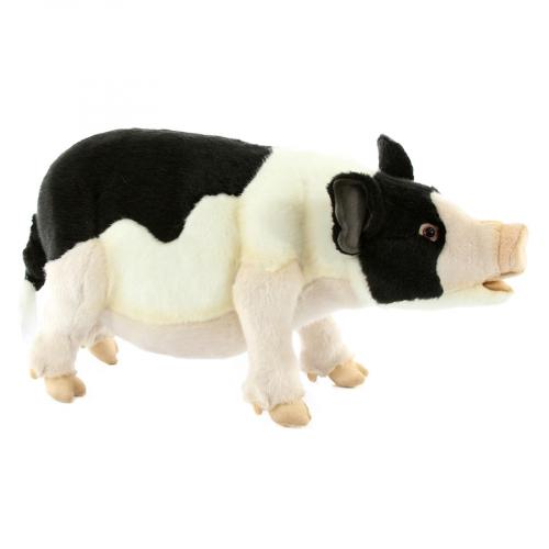 7369 Вьетнамская вислобрюхая свинья, 45 см