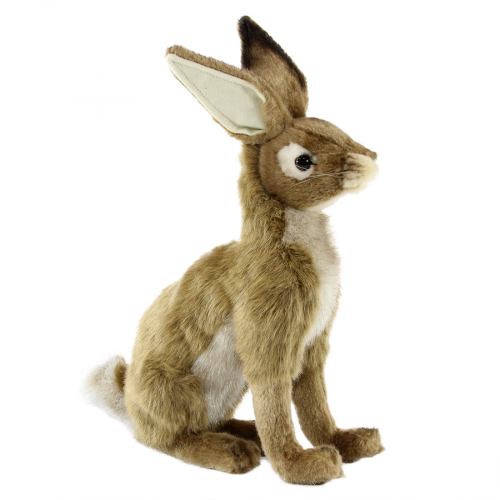 3749 Чернохвостый заяц, 20 см