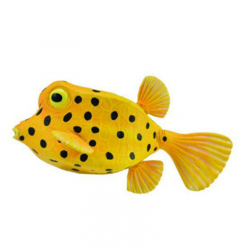 Рыбка-коробка, S