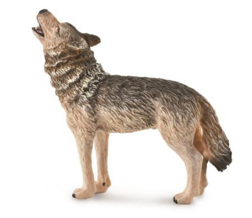 Обыкновенный волк воющий, M
