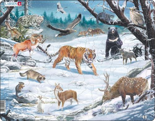 FH34 - Животные Сибири и Дальнего Востока