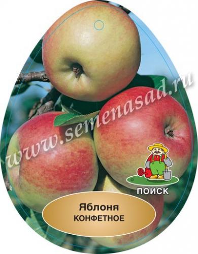 Яблоня Конфетное (подвой семенной) (раннелетний, плод желтый с красными штрихами)