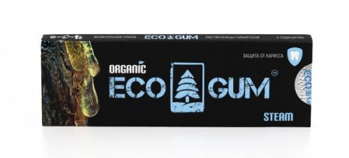 ECO GUM. Органическая жвачка steam 100г., шоу-бокс 20шт. 1/20/50
