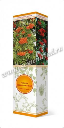 Рябина Сказочная (в коробке) (позднеосенний, плод оранжево-красный)