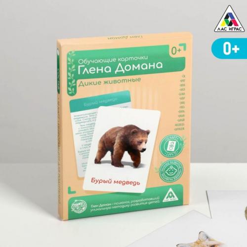 Обучающие карточки по методике Глена Домана «Дикие животные», 12 карт, А6, в коробке