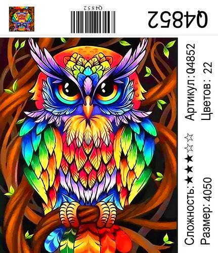 Q4852 Картины-раскраски по номерам 40х50