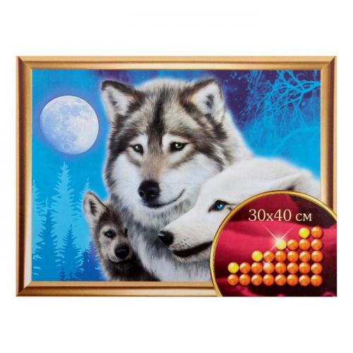 Алмазная вышивка с частичным заполнением «Волки», 30 х 40 см. Набор для творчества